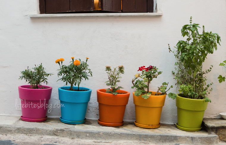 Colors of Skopelos