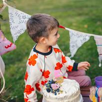 5-ти рожден ден в парка